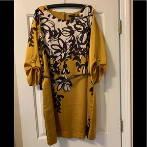 BNWT XL The Limited belted dress